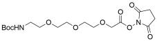 t-Boc-N-Amido-PEG3 NHS acetate