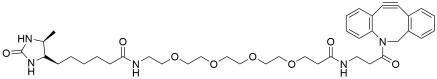 DBCO-PEG4-Desthiobiotin