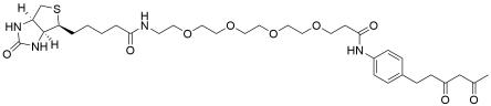 Diketone-PEG4-Biotin