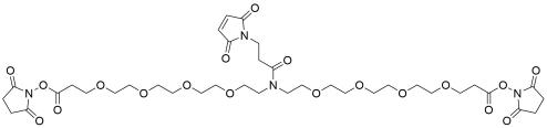 N-Mal-N-bis(PEG4-NHS ester)