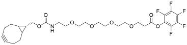 endo-BCN-PEG4-PFP ester