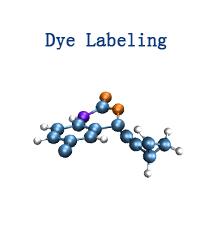 Dye Labeling